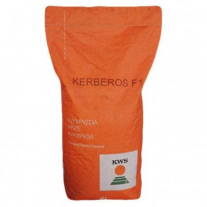 Керберос КВС (ФАО 310) семена кукурузы