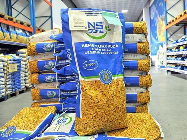семена кукурузы Юг Агролидер НС Семе