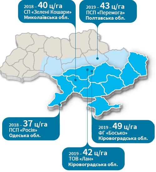 Соняшник РЖТ Таллісман Врожайність в Україні