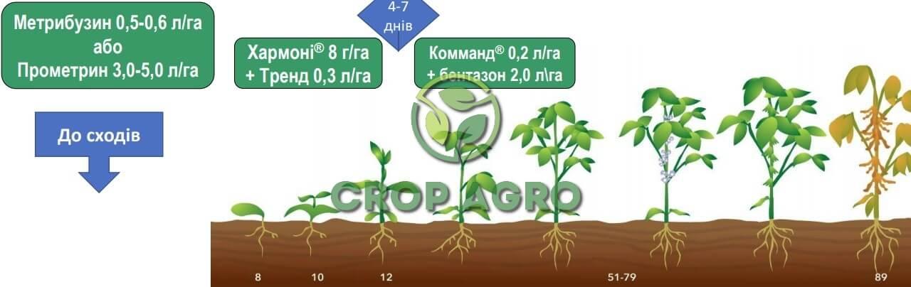 Схема защиты для борьбы с переросшими сорняками