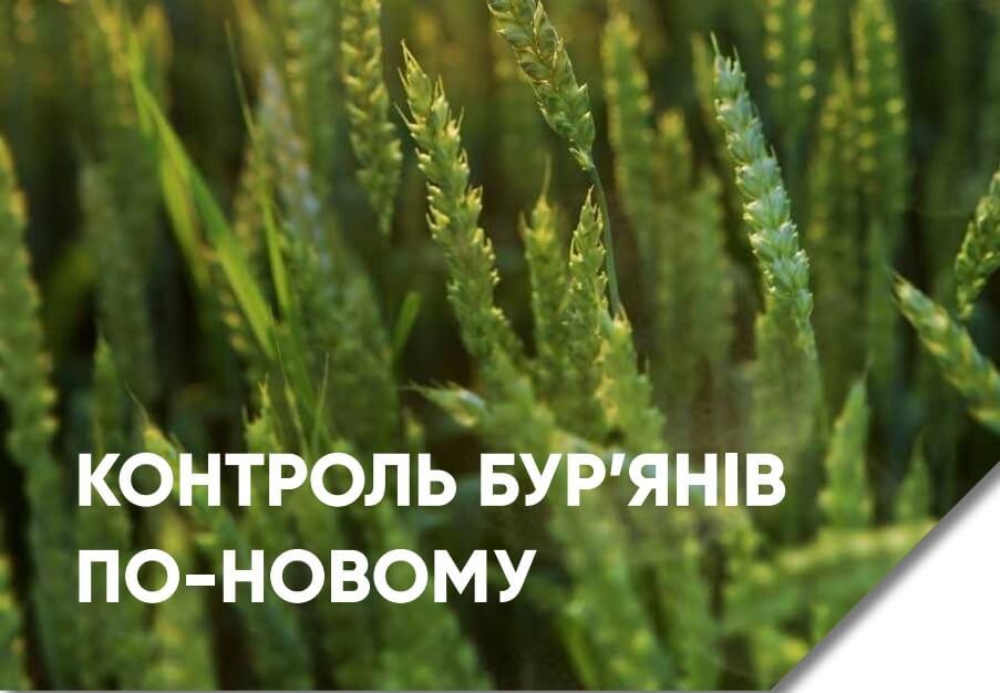 Гербицид Квелекс для зерновых - пшеницы и ячменя