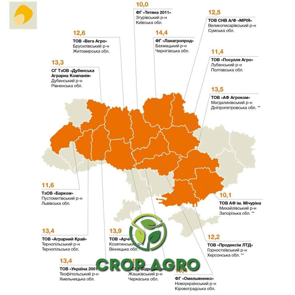 КВС Керберос кукуруза - врожайність