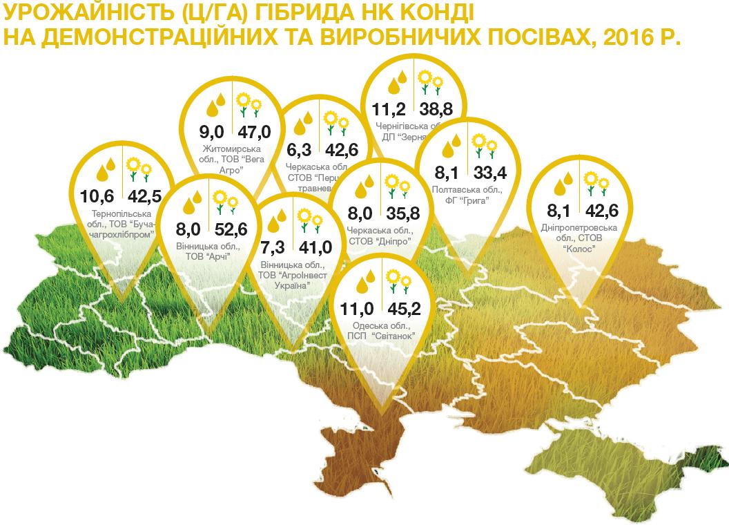 урожайність насіння соняшника НК Конді в Україні